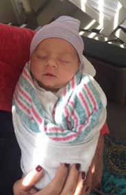 NestEgg newborn